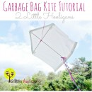 How-to-Make-a-Kite-using-a-Garbage-B