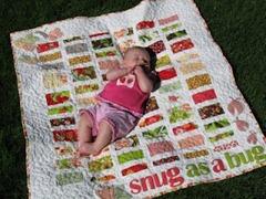 snug as a bug quilt