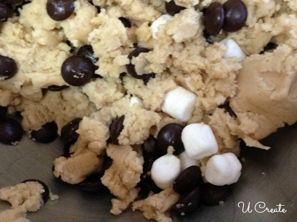 Smore's Cookie Dough