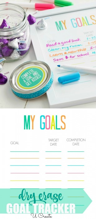 Dry Erase Goal Tracker by U Create