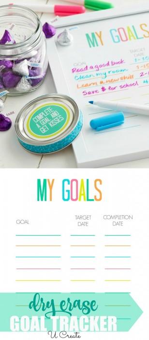 Dry Erase Goal Tracker by U Create