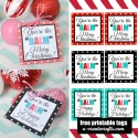"You're the ""BALM"" Christmas Printables - simple, fun gift idea!"