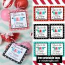 """You're the """"BALM"""" Christmas Printables - simple, fun gift idea!"""