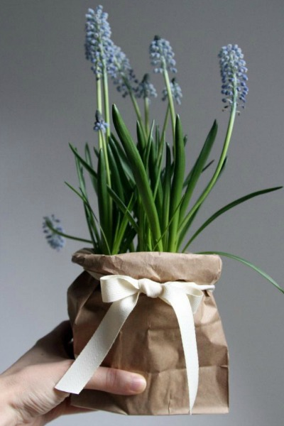 Brown Bag Planter