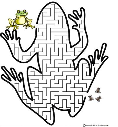 froggy Maze