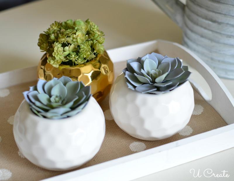 DIY Succulent Arrangements by U Create