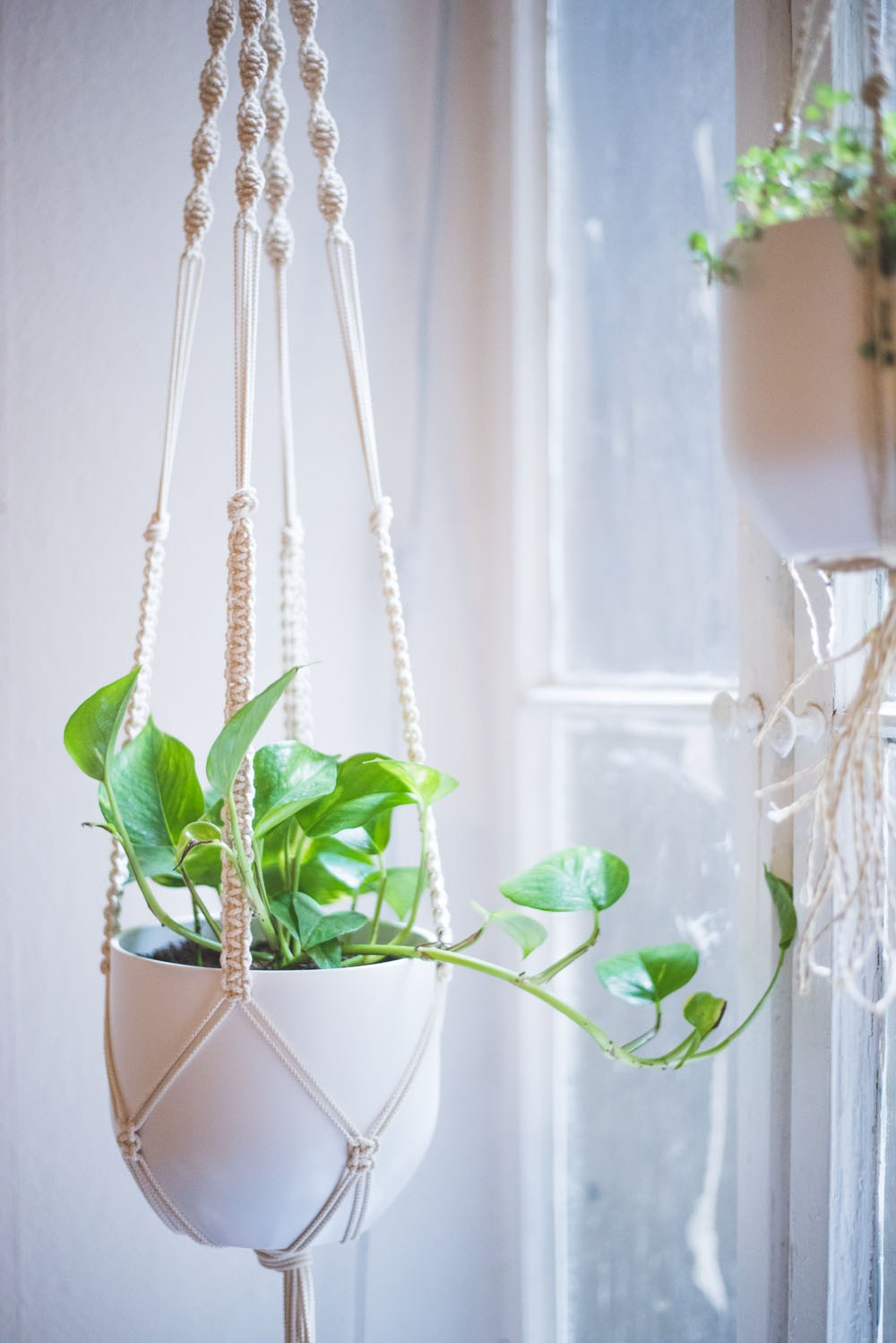 photo about Free Printable Macrame Plant Hanger Patterns known as Unbelievable Macrame Tutorials